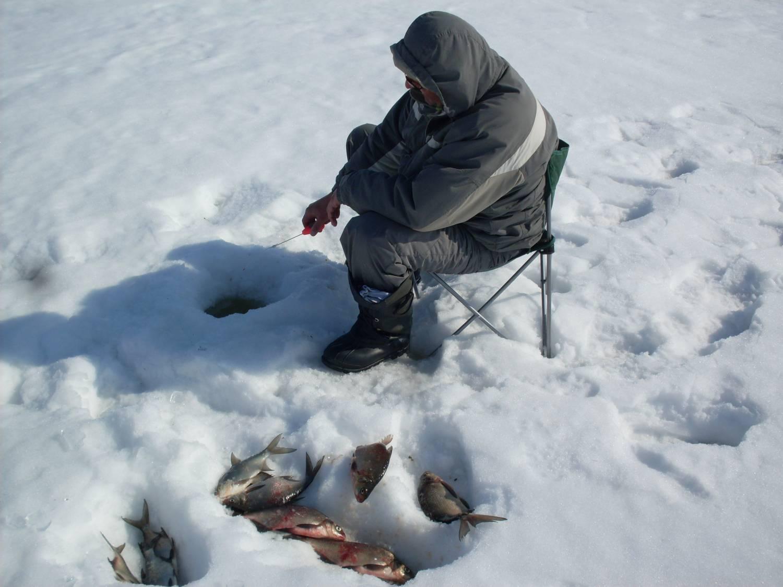рыбалка на селигере недорого